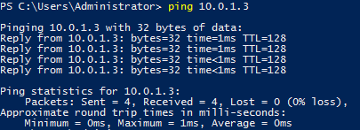 Checking in Windows Server 2016 requires pinging another local server