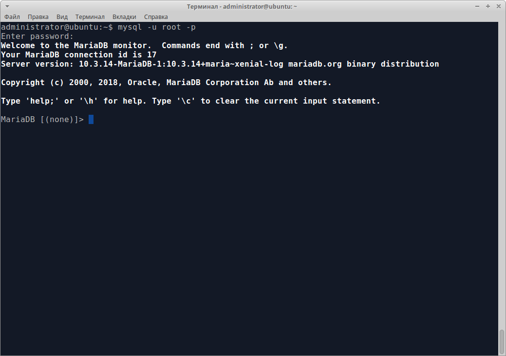 Installing MariaDB: testing the connection to the DBMS