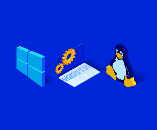 How to choose an OS for a virtual server and what does it affect?
